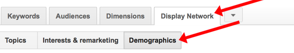 Display network demographics